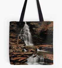 Ricketts Glen Tote Bag