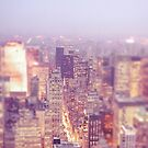 New York City - Skyline - Dusk by Vivienne Gucwa