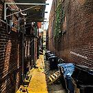 1212 Brick Alley by WanderingWriter