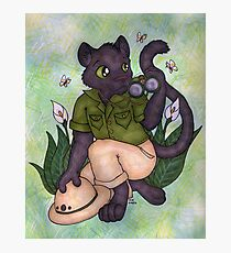 Panther On Safari Photographic Print