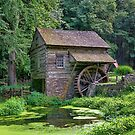 What A Beautiful Mill by Lanis Rossi
