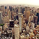 New York City From Above by Vivienne Gucwa