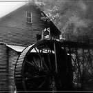 Bush Mill 1896 by lynell