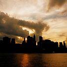 The New York City Skyline by Vivienne Gucwa