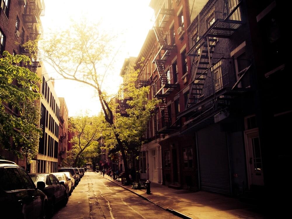 Sunlit Street - Greenwich Village - New York City by Vivienne Gucwa