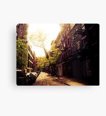 Sunlit Street - Greenwich Village - New York City Canvas Print