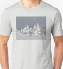 Beautiful mountaintop snowscape Unisex T-Shirt
