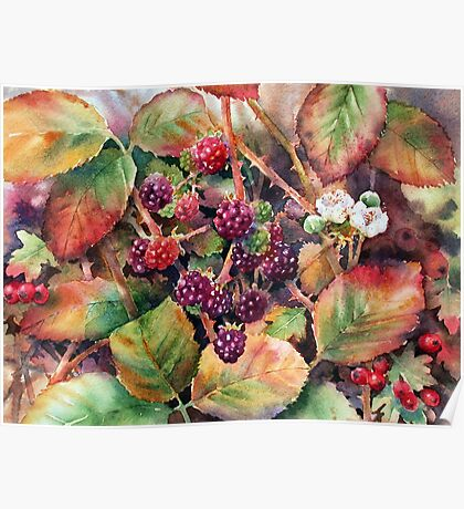 Autumn Hedgerow Poster