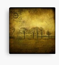 near Amsterdam Canvas Print