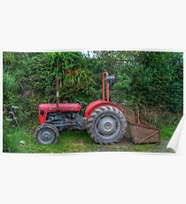 Massey Ferguson at Molland Poster