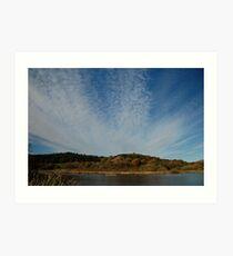 Margrove Landscape Art Print