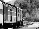 Cuyahoga Valley Scenic Railroad by Marcia Rubin