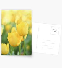 .yellow. Postcards