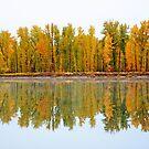 «Reflexiones de otoño» de Whisperingpeaks