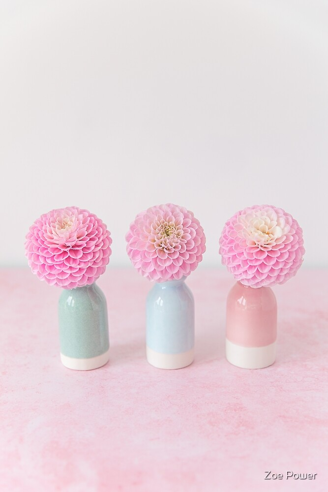 Pastel pink Dahlias pom poms by Zoe Power