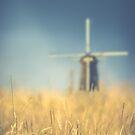 Weizenfeld Windmühle von mrdoomits