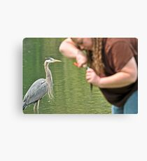 Great Blue Heron and Great Big Fishing Lady Canvas Print