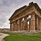 View of the Temples - Paestum, Salerno, Italy by David Lewins