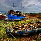 Beached by Brian Tarr