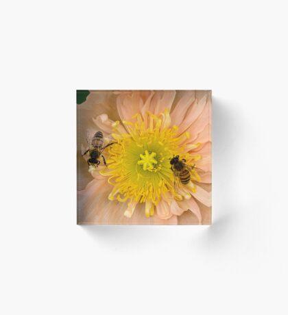 Glückliche Bienen Acrylblock