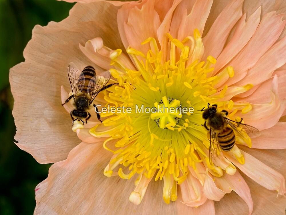 Glückliche Bienen von Celeste Mookherjee