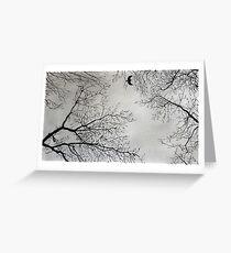 November sky Greeting Card