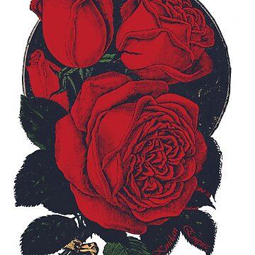 Vintage Roses by kindanempire
