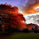 Fall Furnace by Stephanie Hillson