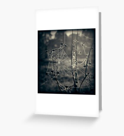 Beneath the Apple Trees Greeting Card