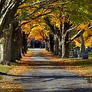 Autumn Path to the Chapel by Monica M. Scanlan