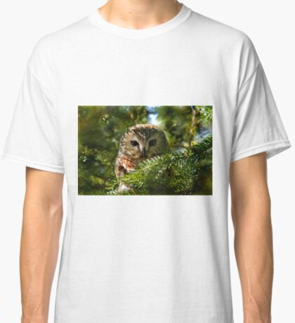 Northern Saw Whet Owl - Amherst Island, Ontario, Canada Classic T-Shirt