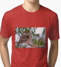 Sleeping Northern Saw Whet Owl - Ottawa, Ontario Tri-blend T-Shirt
