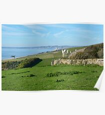 Overview From Abbotsbury Gardens Poster