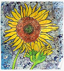 Sunflower ~ A collaboration Poster
