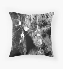 """For Art May Err, But Nature Cannot Miss""...Dryden Throw Pillow"