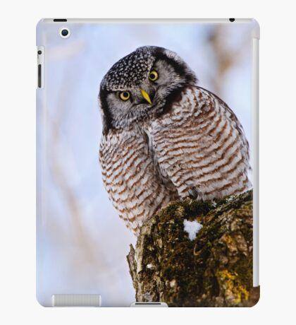 Uhm, are you sure iPad Case/Skin