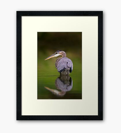 GBH reflection Framed Print