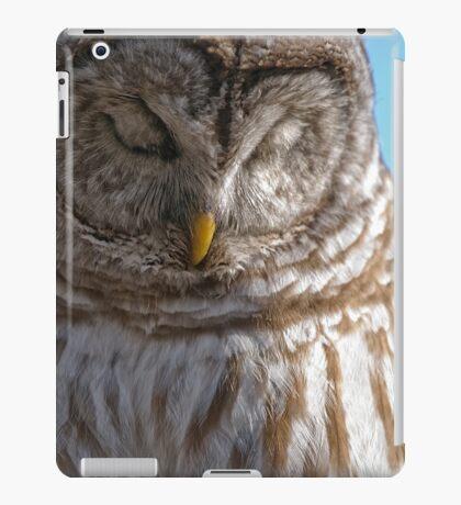 Barred Owl in Tree - Brighton, Ontario iPad Case/Skin