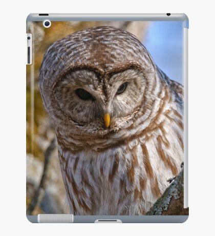 Barred Owl - Brighton Ontario iPad Case/Skin