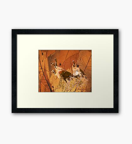 Turkey TIme Framed Print