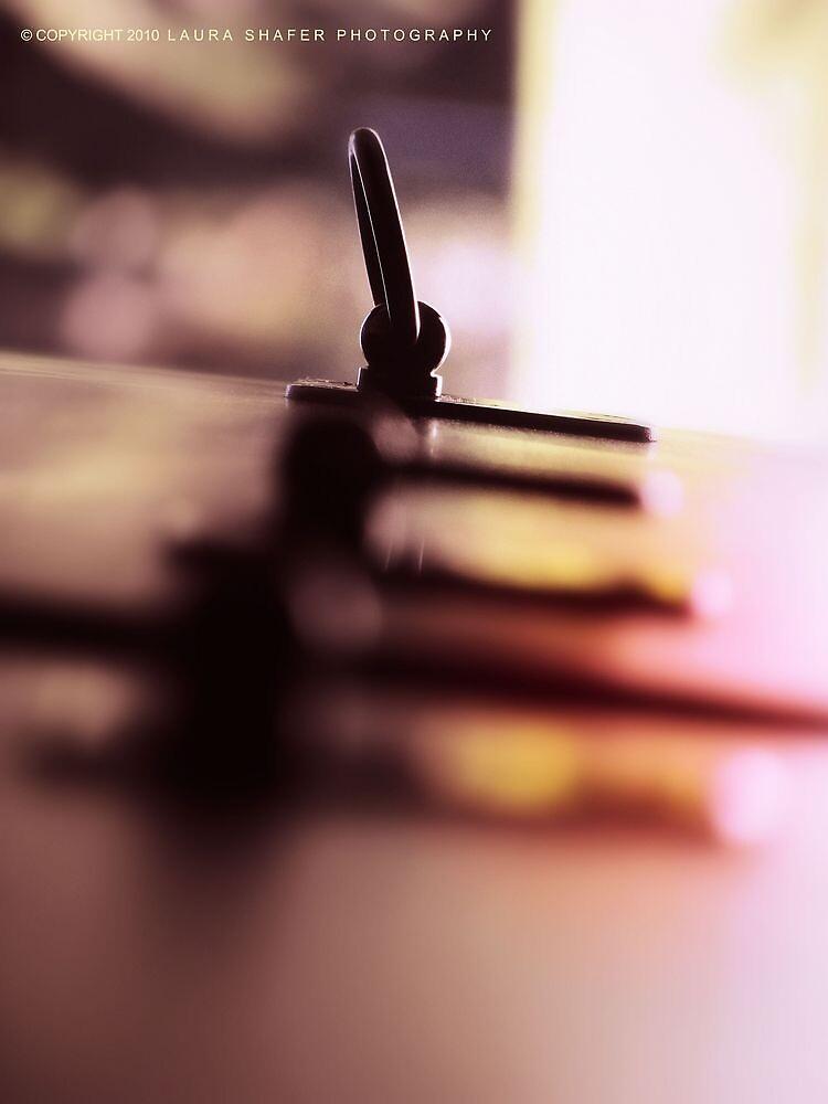 LANGUID LAVENDER PANTONE #D6CADD by Laura E  Shafer