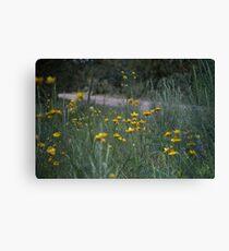 Roadside Wildflowers Leinwanddruck