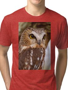 Saw Whet Owl - Amherst Island, Ontario Tri-blend T-Shirt