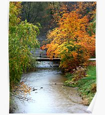A Stream in Fall............ Poster