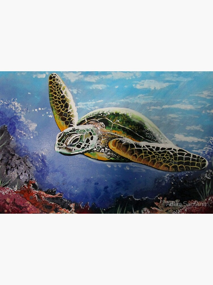 Sea Turtle by Adamzworld