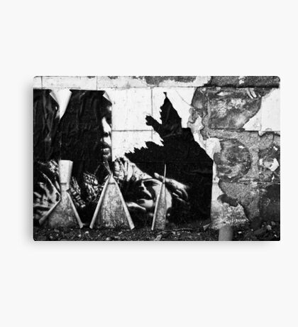 Ephemere Canvas Print