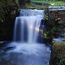 Jesmond Dene, waterfall. by Onions