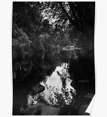 Remember Road Trips Oregon Historical River 431 Poster
