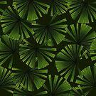 Palm leaves by Katerina Kirilova