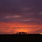 Sunrise over Dunwich Heath by shutternutter